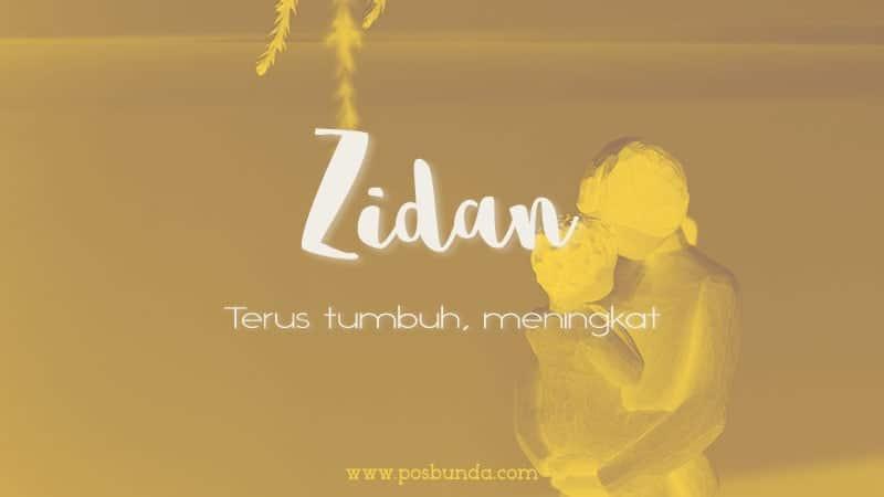 Arti Nama Zidan - Zidan