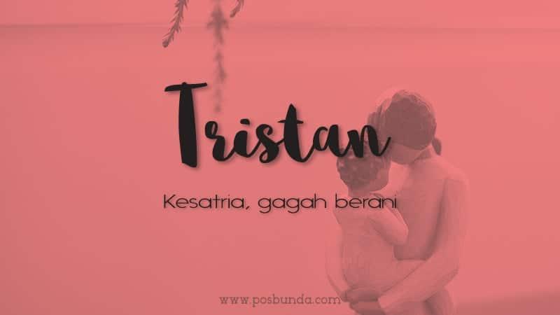 Arti Nama Tristan - Tristan