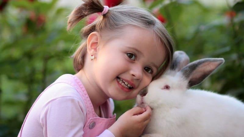 Cara Menangani Anak Autis - Anak dan Kelinci