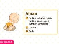 Arti Nama Afnan - Afnan