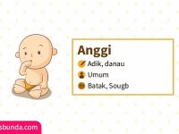 Arti Nama Anggi - Anggi