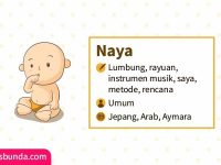Arti Nama Naya - Naya