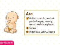 Arti Nama Ara - Ara