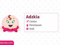 Arti Nama Adzkia - Adzkia