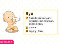 Arti Nama Ryu - Ryu