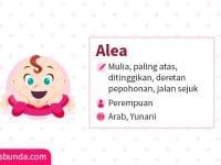 Arti Nama Alea - Alea