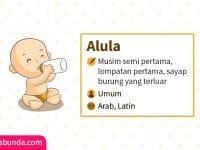 Arti Nama Alula - Alula