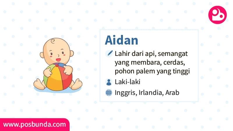 Arti Nama Aidan - Aidan