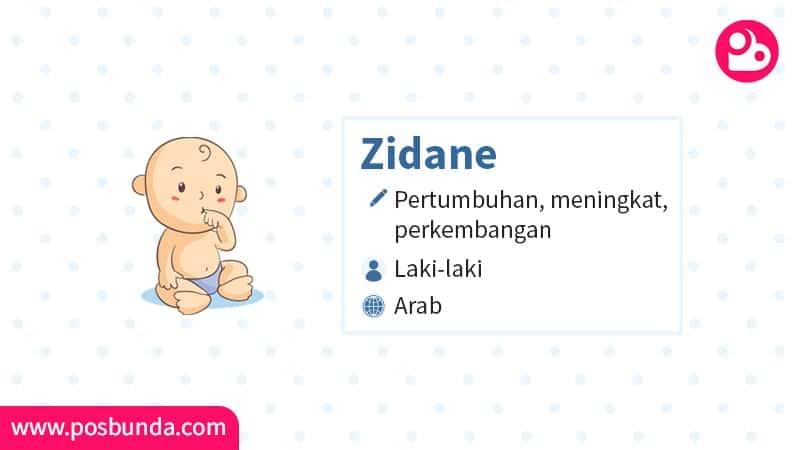 Arti Nama Zidane - Zidane